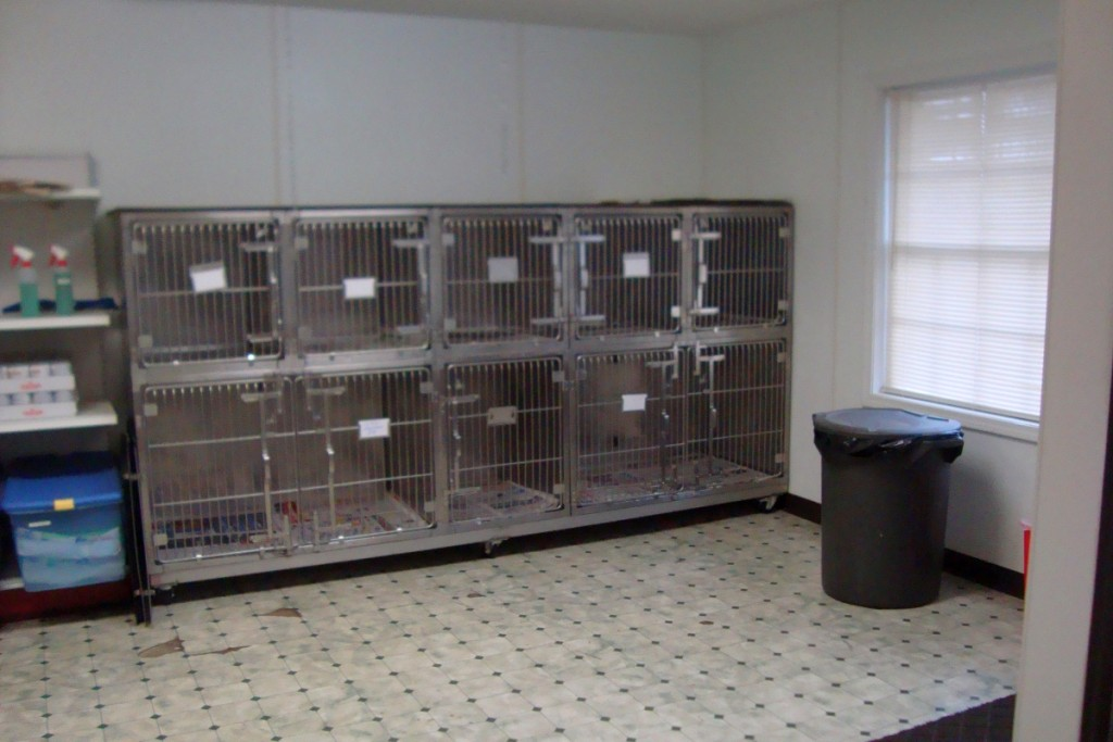 Dog Ward Cages